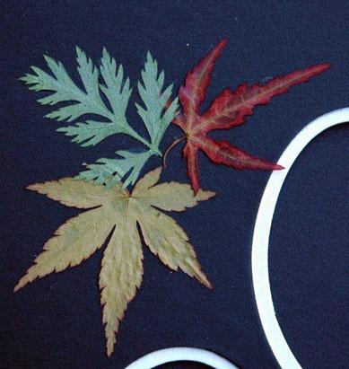 Custom Mat Leaves